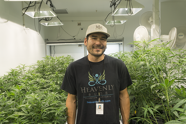 Cannabis Tissue Culture Q&A with Propagation Specialist Mike